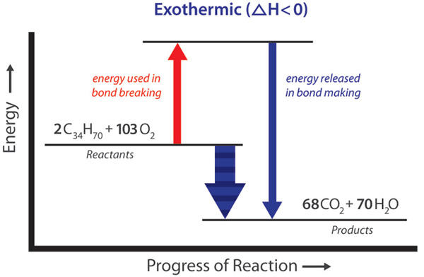 Exothermic Endothermic Chemical Change Energy Foundations For
